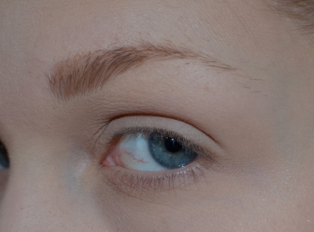 "I start by adding the color ""Smog"" on the inner part of the brow. I apply the color by pulling the brush upward, in the direction of the brow, to give it a natural look."